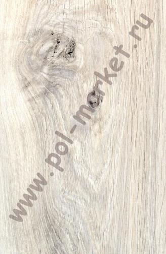 Купить CLASSIC 8/32 (Россия) Ламинат Egger, Classic (8мм, 32кл) Дуб Муром H2834  в Екатеринбурге