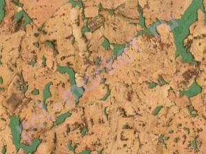Настенная пробка Corksribas condor green