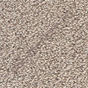 Купить КЬЯНТИ - средний ворс Ковролин Zartex (Зартекс), Кьянти, 255 бежево-коричневый, ширина 3 метра (РОЗНИЦА)  в Екатеринбурге