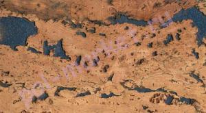 Пробка настенная Corksribas (КорксРибас), Virgen Blue