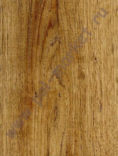 Ламинат Egger, Classic (8мм, 33кл) Дуб Кортина Н2716