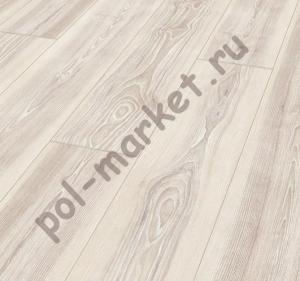 Купить SOUL 33/8 Ламинат Maestro (Маэстро), Soul-8 (Сол, 33кл, 8мм) Ясень Сканди, SO 804  в Екатеринбурге