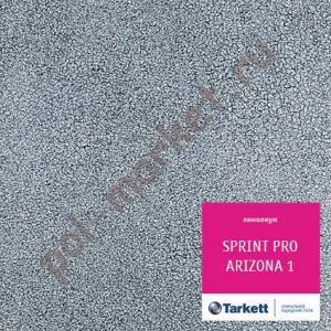 Линолеум Tarkett (Таркетт), Sprint PRO (Спринт ПРО), ARIZONA 1, ширина 2.5 метра, полукоммерческий (ОПТ)