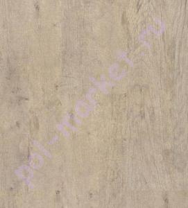 Купить Wood (замковая) Пробковый паркет Corkstyle Wood oak antique washed  в Екатеринбурге