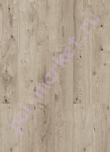 Купить Wood (замковая) Пробковый паркет Corkstyle Wood oak grey  в Екатеринбурге