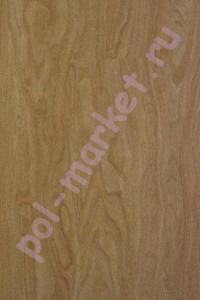 ПВХ плитка клеевая Refloor (Рефлор), Home (Хоум, 2мм, 0.2мм, 32кл) WS 721, Тисовое Дерево