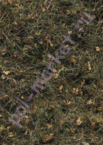 Клеевое пробковое покрытие CorkStyle (КоркСтиль), Fantazy (Фантазия), Bergheu