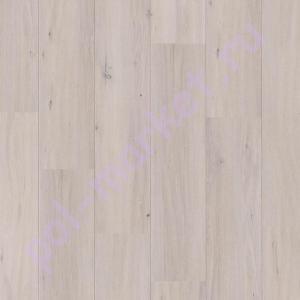 Купить FUTURO HARMONY 32/8 Ламинат Classen (Классен), Futuro Harmony (Футуро Гармония, 32кл, 8мм) 38619, Дуб Норвуд  в Екатеринбурге
