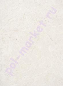 Клеевое пробковое покрытие CorkStyle (КоркСтиль), Eco Cork (Эко Корк), Madeira white