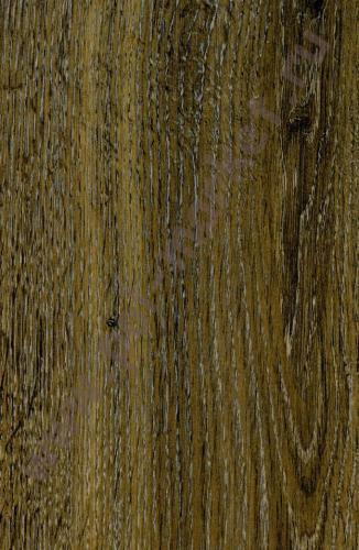 Купить CLASSIC 8/32 (Россия) Ламинат Egger, Classic (8мм, 32кл) Дуб Патерна H2827  в Екатеринбурге