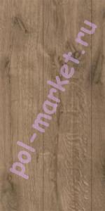 Купить PROGRESSIVE 33/8/4V Ламинат Classen (Классен), Progressive (Прогрессив, 33кл, 8мм, 4V-фаска) 38039, Ель Пуерто  в Екатеринбурге