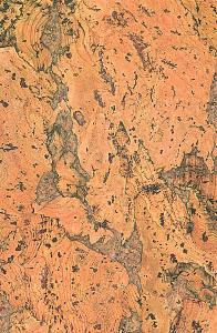Настенная пробка Wicanders (Викандерс), Dekwall (Деквал), RY15, Fiord Natural
