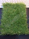 Искусственная трава Tropicana 35
