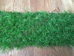 Искусственная трава оптом: Ideal (Бельгия), Evergreen Grass, ширина 4 метра
