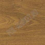 Паркетная доска Corkstyle Woodplus Wood Wild oak knotty